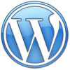 wordpress Mario Engel